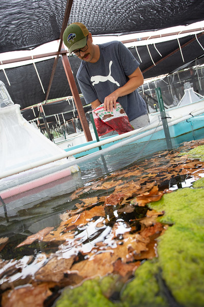 Professor Daniel Allen researches intermitten streams and rivers at the Aquatic Research Center on the campus of the University of Oklahoma in Norman, OK.