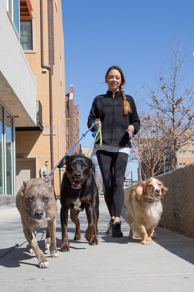 Amanda St. John walking dogs in the Deep Duece area of Oklahoma City.