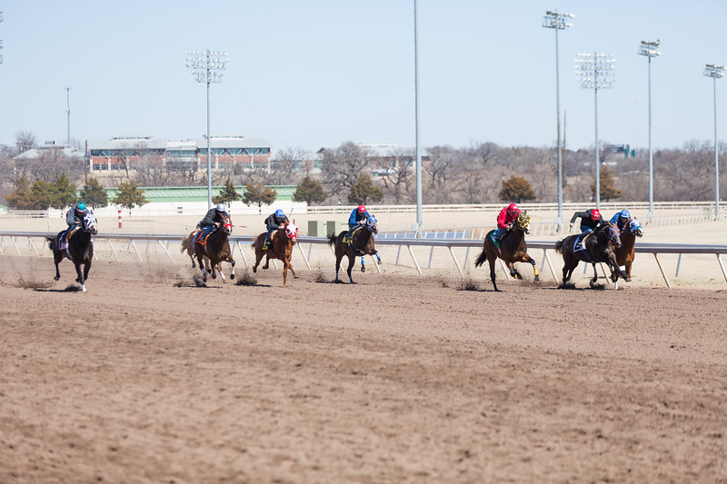Quarter horses run practices races at Remington Park located at 1 Remington Place in Oklahoma City, OK.
