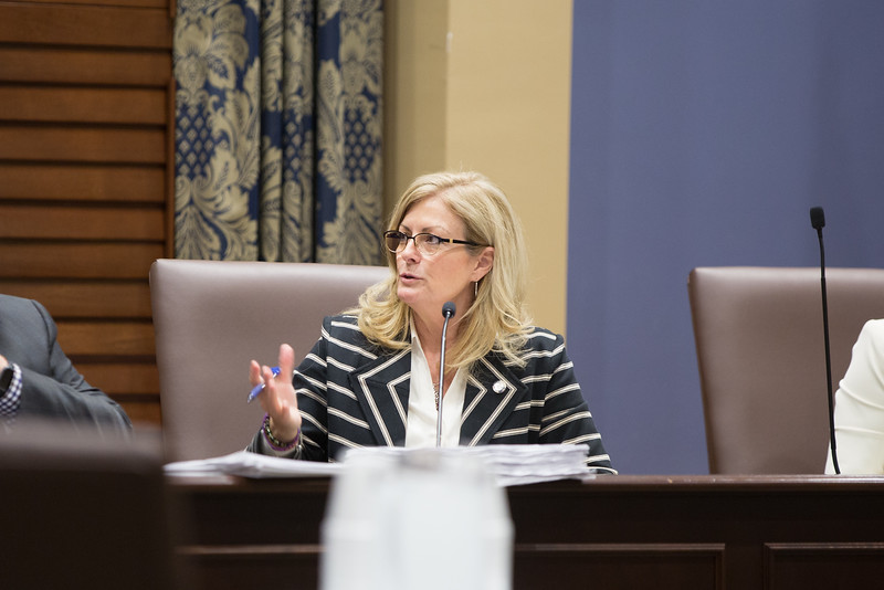 Sen Kim David chairs the Senate Joint Comittee on Apropriations and Budget at the Oklahoma State Capitol.