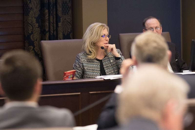 Senator Kim David chairs a meeting of the Oklahoma Senate Joint Comitte on Appropriations and Budget at the Oklahoma State Capitol.