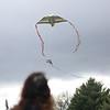 KiteFest004