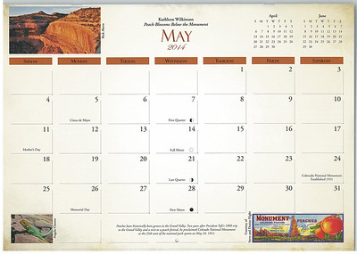"Collared lizard ""grid photo"" as it appeared in 2014 Colorado National Monument calendar"
