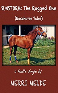 Sunstorm: The Rugged One (Racehorse Tales)