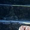 Eva Rivera-Ferrell Elegant magazine_Page_02_Image_0003