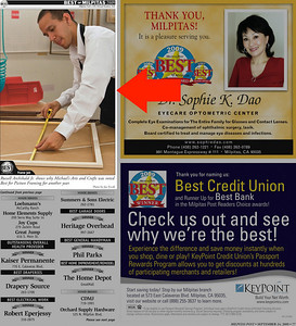 Milpitas Post Top 100 Issue - Michael's: Best Framing