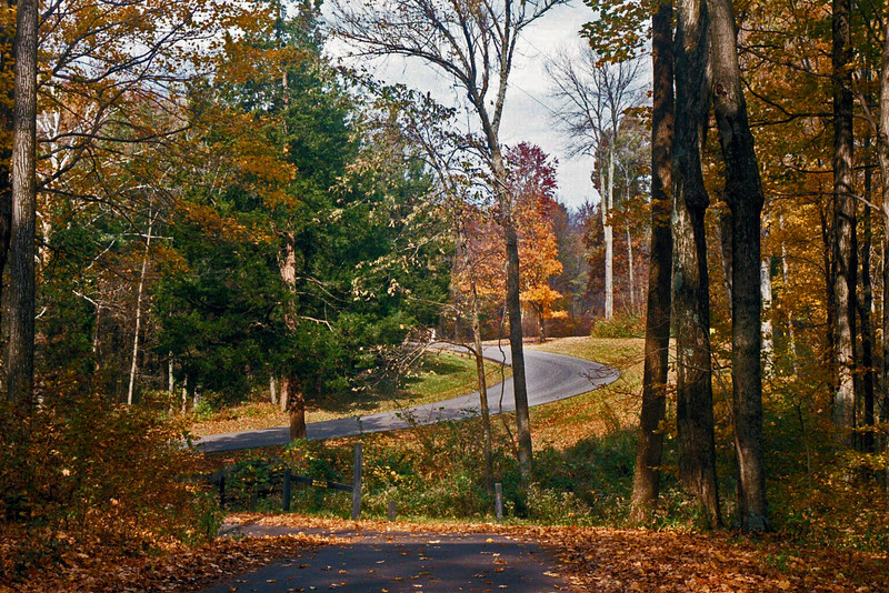 This winding road can be enjoyed and photographed by going to Versailles State Park