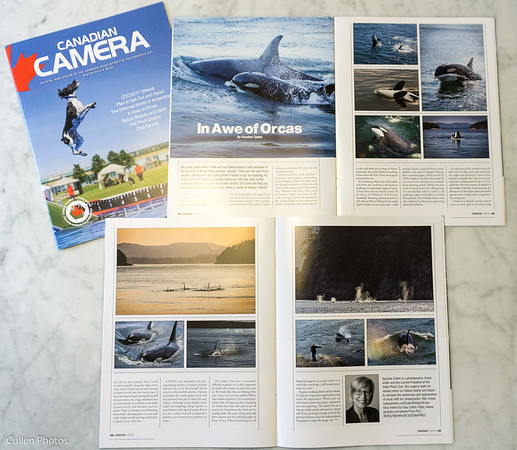2016 Winter Canadian Camera, the national publication of CAPA, the Canadian Association for Photographic Art.
