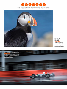 Atlantic PuffinPhotography Week,  September 17, 2015, Issue 156