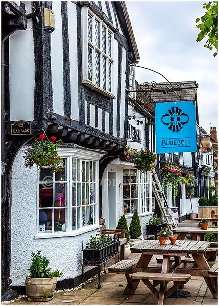 Bluebell, Henley In Arden.