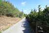 Directions Conifer Cottage to Family Restaurant Pivovar 1.4km