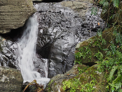 El Yunque Falls