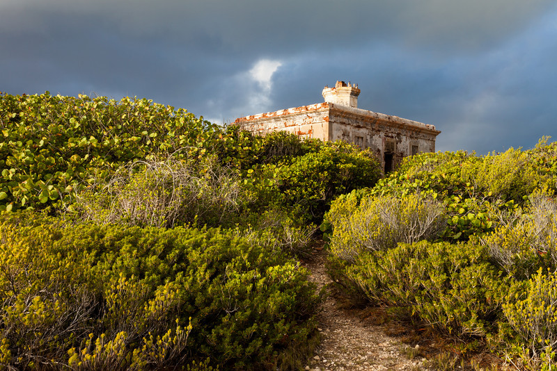 A narrow trail leads through the overgrown brush to the ruins of the Puerto Ferro Lighthouse. Vieques, PR<br /> <br /> PR-090811-0032