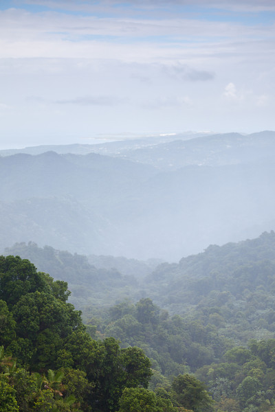 Dense fog rolls over the mountain range around el Yunque. El Yunqe National Forest, PR<br /> <br /> PR-090803-0186