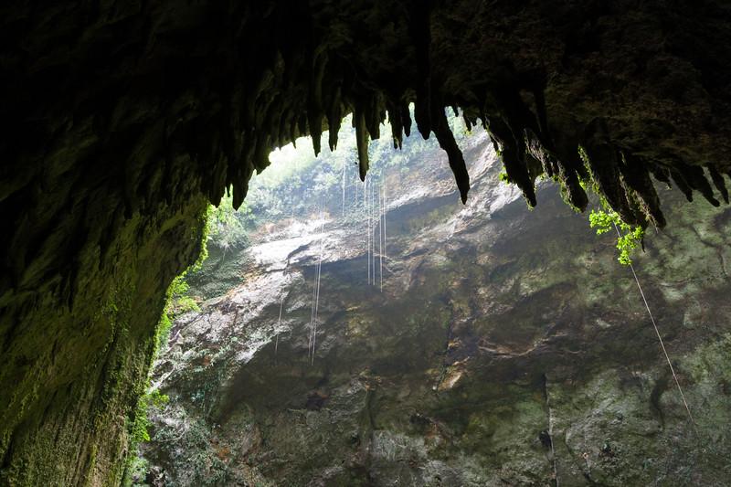 Cueva Clara Sinkhole