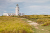 High winds make the grasses by the Cabo Rojo lighthouse dance around. Cabo Rojo, PR<br /> <br /> PR-110728-0140