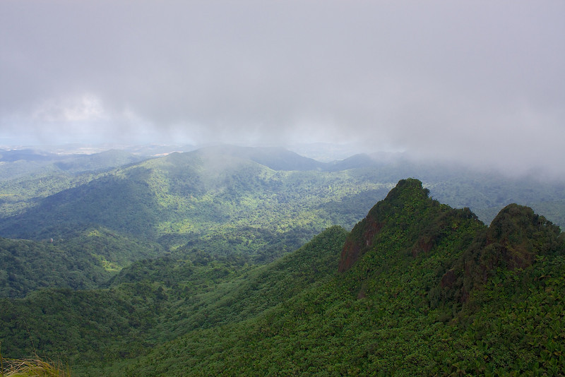 Also from the top of Mount El Yunque. You can see the observation tower as a very small lighter object on the left side of the photograph. In the next photograph I was standing on the top of that observation tower looking up at this mountain.