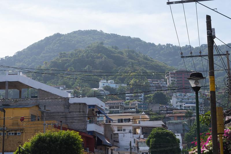Alta Vista