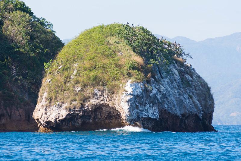 Seabird habitat