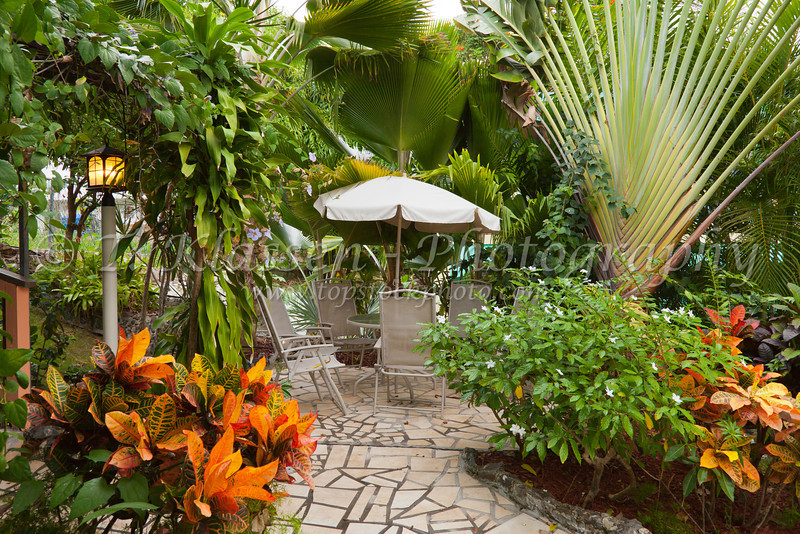 The tropical gardens at the Lazy Parrot hotel in Rincon, Puerto Rico.