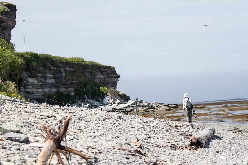 Puffin Island, île aux Perroquets, Quebec CA