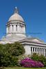 Washington State Capitol 125