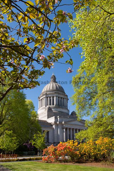 Washington State Capitol 100
