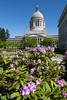 Washington State Capitol 113