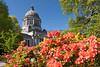 Washington State Capitol 104