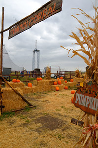 Inertia 2 at the corn maze
