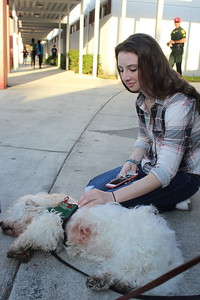 Photo by Hayden Korr