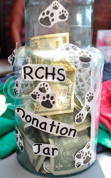 Public Hall and  Riley County Humane Society teamed up to host an adoption and fundraising event on August 5th.  (Aubrey Bolinger | Collegian Media Group)