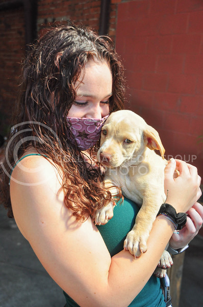 Public Hall and Riley County Humane Society teamed up to host an adoption and fundraising event on August 5th.  Sophomore Svea Knight holds a puppy after participating in the fundraiser. (Aubrey Bolinger | Collegian Media Group)