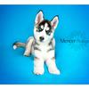 Siberian Huskey Mencer Photography-6