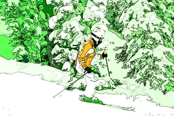 Skis 'n  Trees