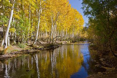 Bishop Creek in the Fall, California