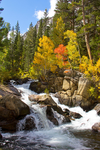 Aspen Cascade, Eastern Sierra California
