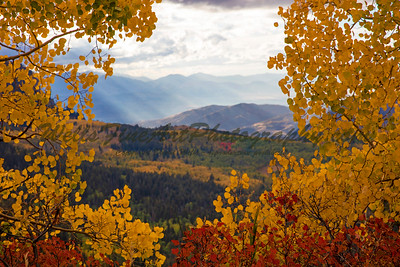Sunbeams Framed with Aspens, Wasatch Range