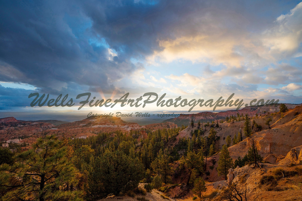 Sunrise After a Storm, Bryce Canyon