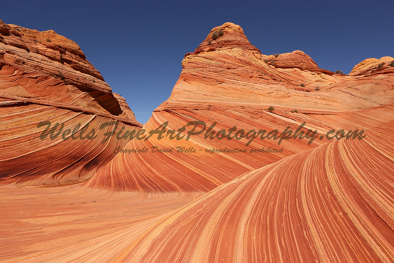 Inside The Wave, Arizona