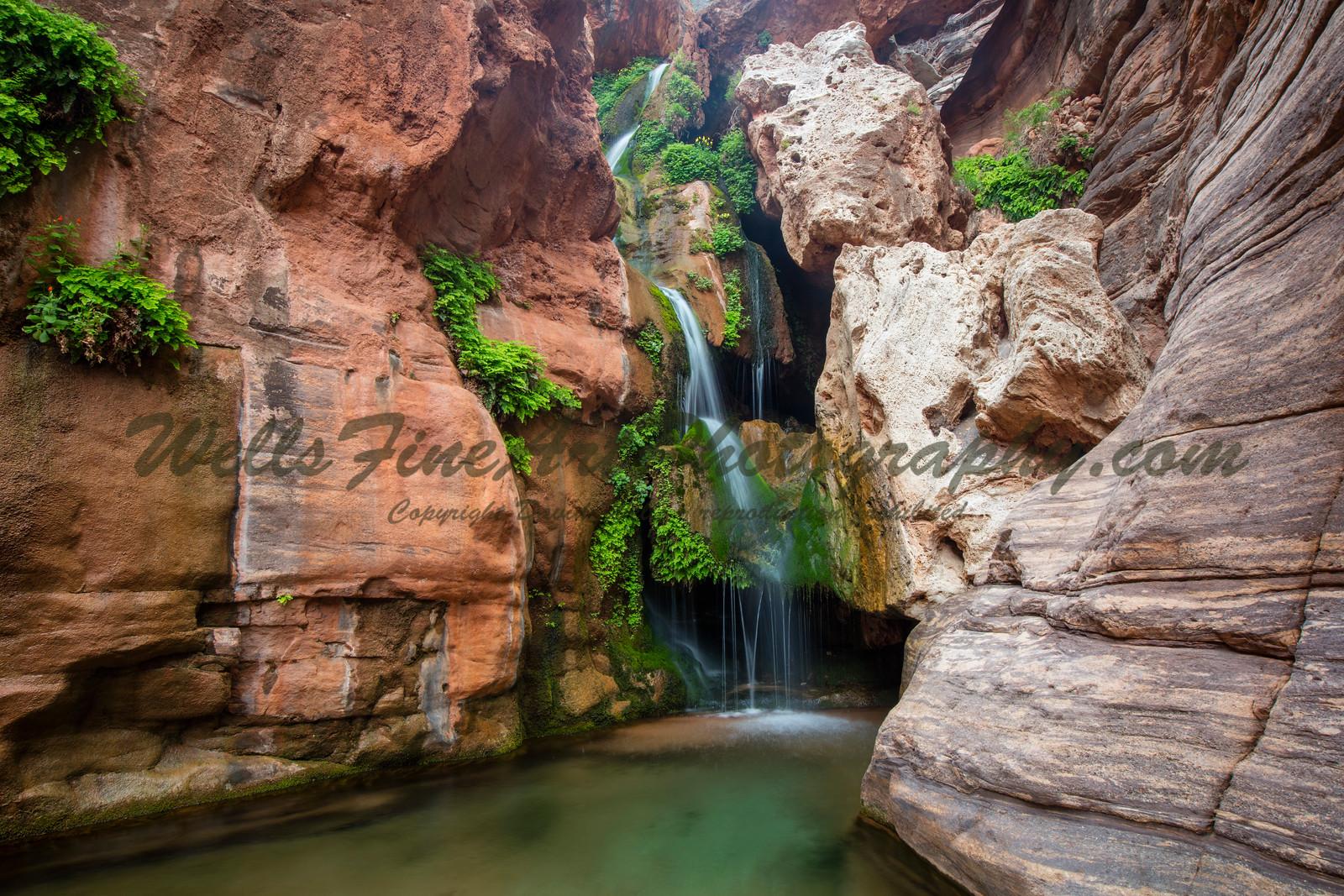 Elves Chasm, Grand Canyon