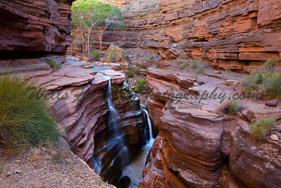 Upper Deer Creek Falls, Grand Canyon