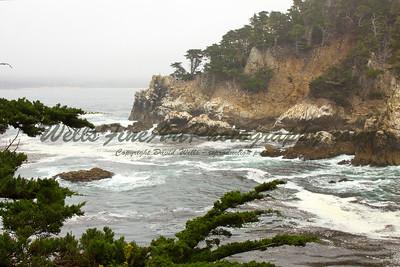 Headlands in the Fog, Point Lobos California