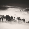 Black and White early morning mist Thirlmere.