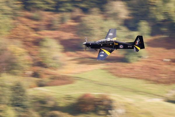 The blur of autumn and a Tucano