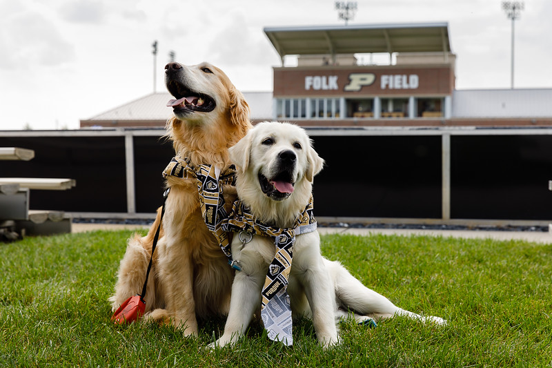 Purdue Soccer vs Iowa State