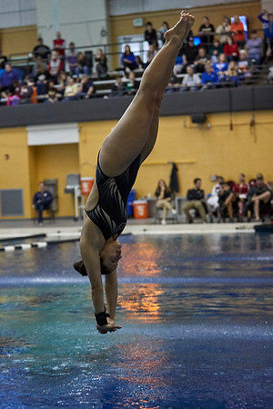 Purdue Diving NCAA Zone C Championship