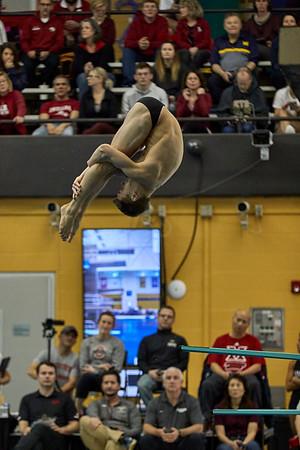 Purdue Diving NCAA Zone C Championship