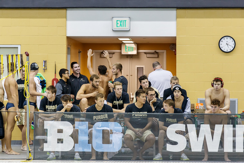 Purdue Swimming and Diving vs Michigan State