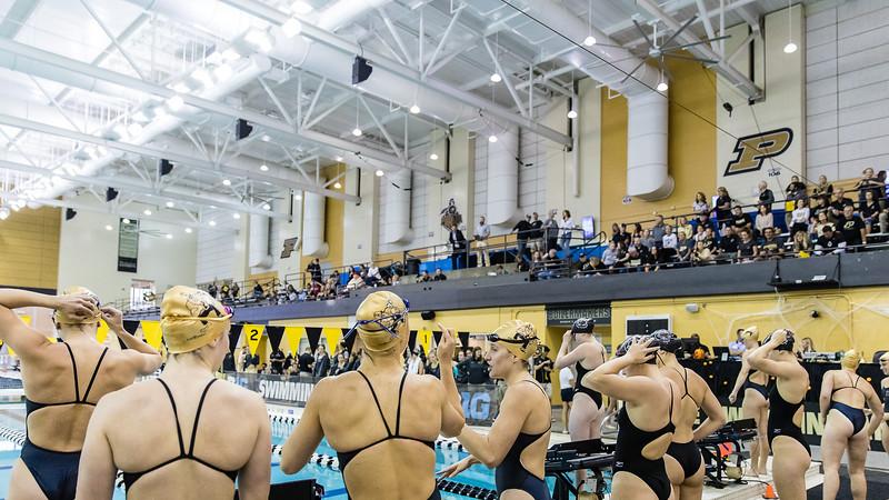 Purdue Swimming and Diving vs South Carolina